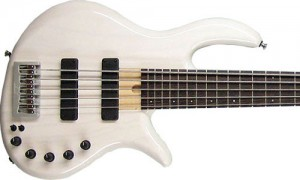 ExPat eVolution 5-String White Gloss Finish