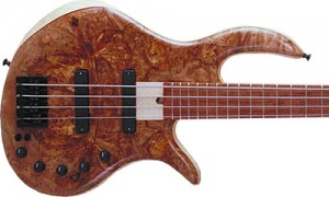 eVolution Platinum Series Hybrid 4-String