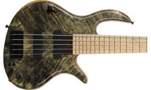 eVolution Platinum Series Thru-Neck 5-String
