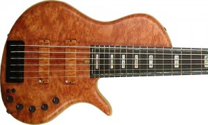 eVolution Master Series Single-Cut 6-String